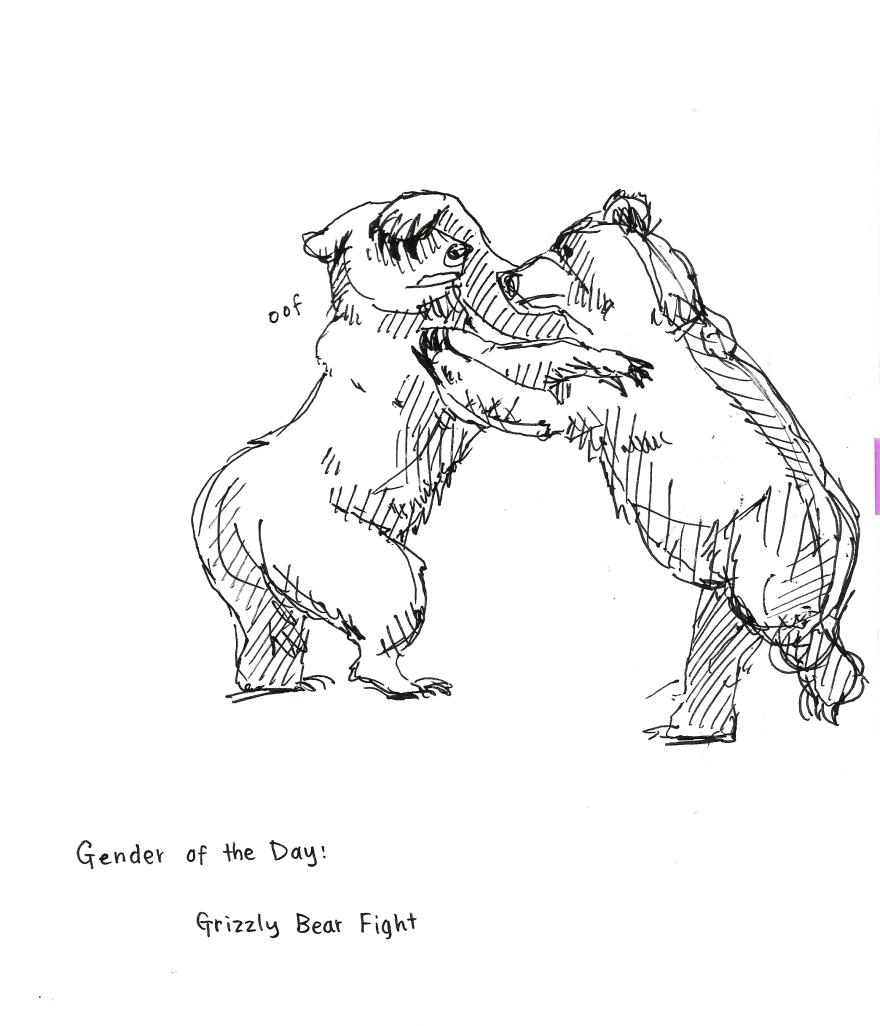 bear fight.jpeg